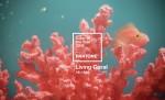 Pantone's Living Coral